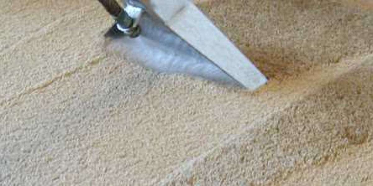 Get the Best Carpet Cleaner For Your Home