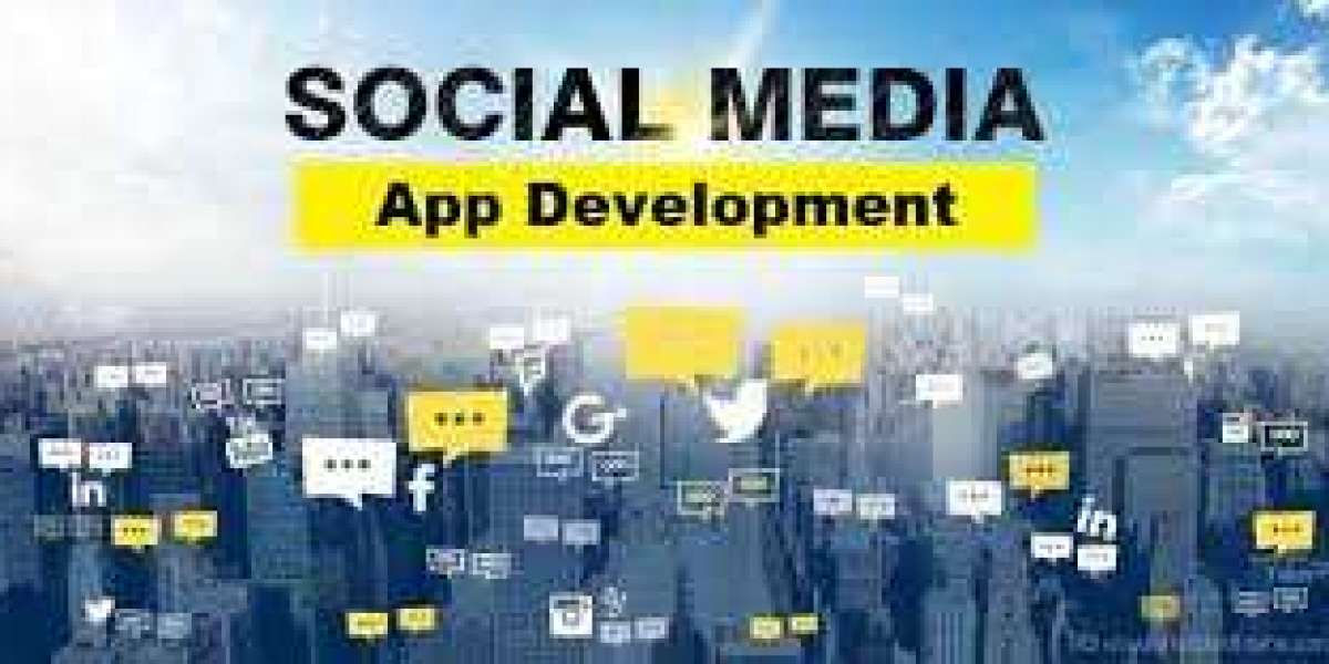 Interior Scenario of Important Features and Issues in Social Media App Development