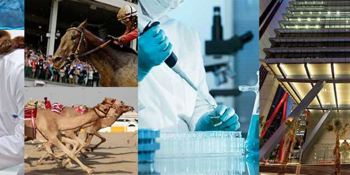 Why Should You Consider Horse's Nutritional Supplements?