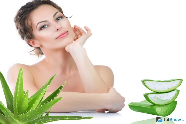 10 Benefits of Aloe Vera that makes your Skin Healthier - DY Crunch