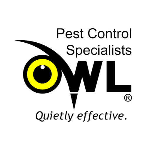 Tips to Help You Find the Best Pest Control Company in Dublin – Owl Pest Control